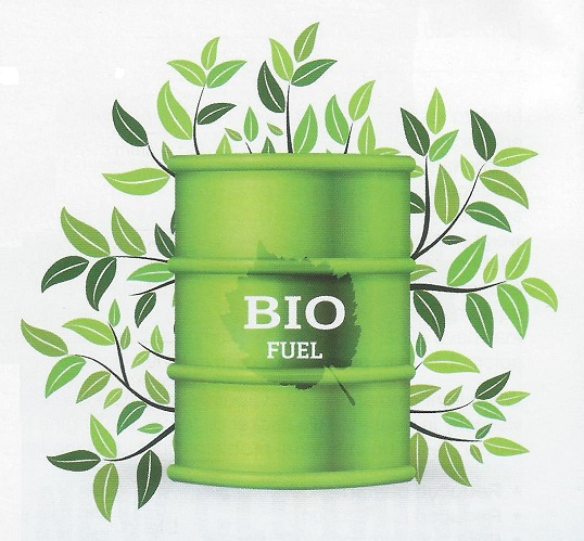 Image of green drum w/BIO Fuel on the front and green leaves in the background